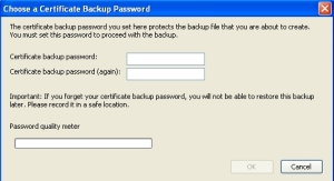 Certificate Backup Password Popup